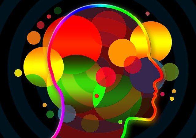 Las implicaciones de la plasticidad neuronal