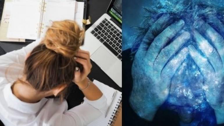 La respuesta del sistema nervioso al estrés